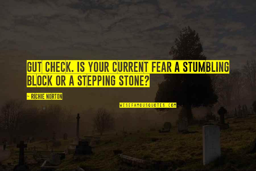 Marketing Success Quotes By Richie Norton: Gut check. Is your current fear a stumbling