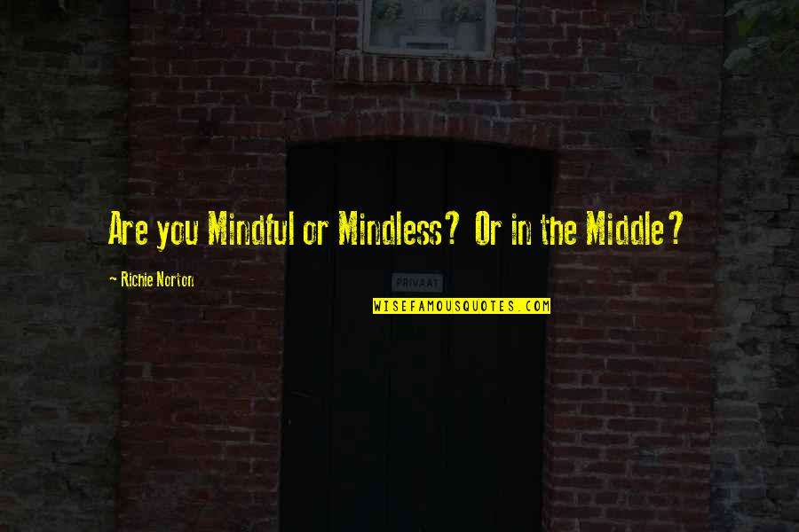 Marketing Success Quotes By Richie Norton: Are you Mindful or Mindless? Or in the