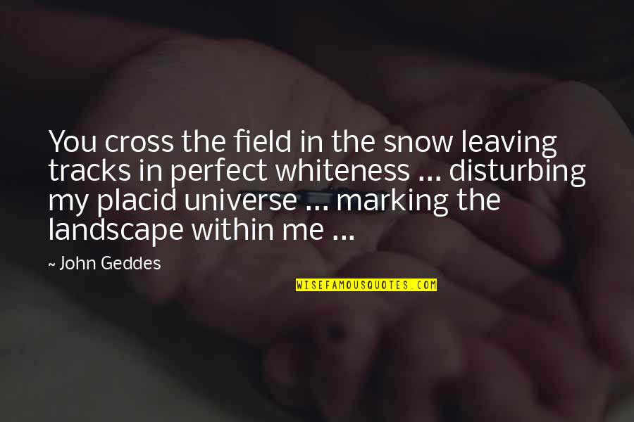Marking Quotes By John Geddes: You cross the field in the snow leaving