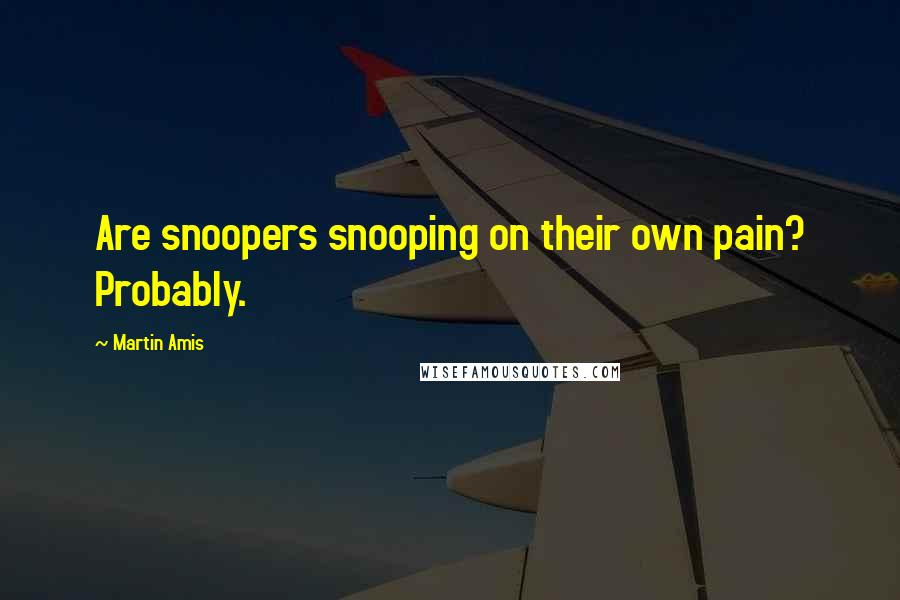 Martin Amis quotes: Are snoopers snooping on their own pain? Probably.