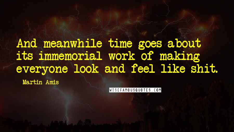 Martin Amis quotes: And meanwhile time goes about its immemorial work of making everyone look and feel like shit.