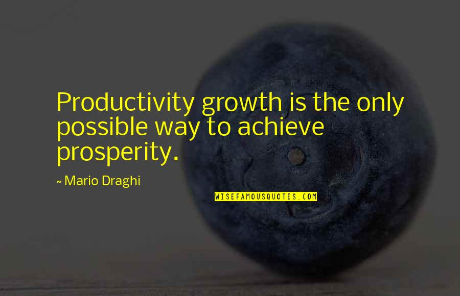 Martin Castillo Quotes By Mario Draghi: Productivity growth is the only possible way to