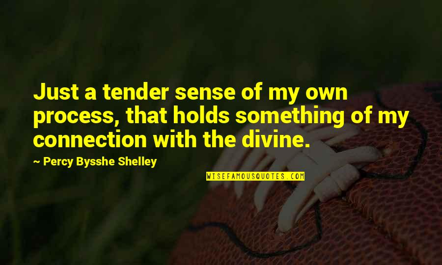 Marvin Mcfadden Quotes By Percy Bysshe Shelley: Just a tender sense of my own process,