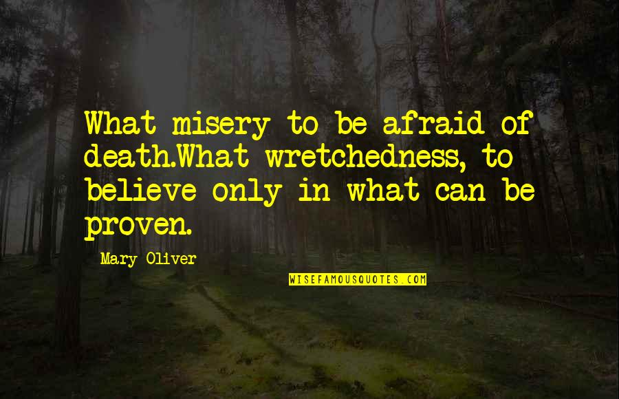Mary 1 Quotes By Mary Oliver: What misery to be afraid of death.What wretchedness,