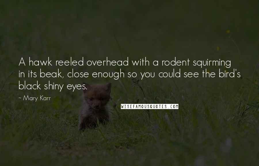 Mary Karr quotes: A hawk reeled overhead with a rodent squirming in its beak, close enough so you could see the bird's black shiny eyes.