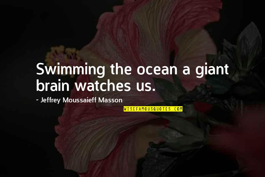 Masson Quotes By Jeffrey Moussaieff Masson: Swimming the ocean a giant brain watches us.