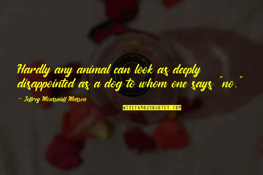 Masson Quotes By Jeffrey Moussaieff Masson: Hardly any animal can look as deeply disappointed