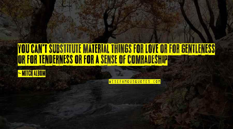 Material Things And Love Quotes By Mitch Albom: You can't substitute material things for love or