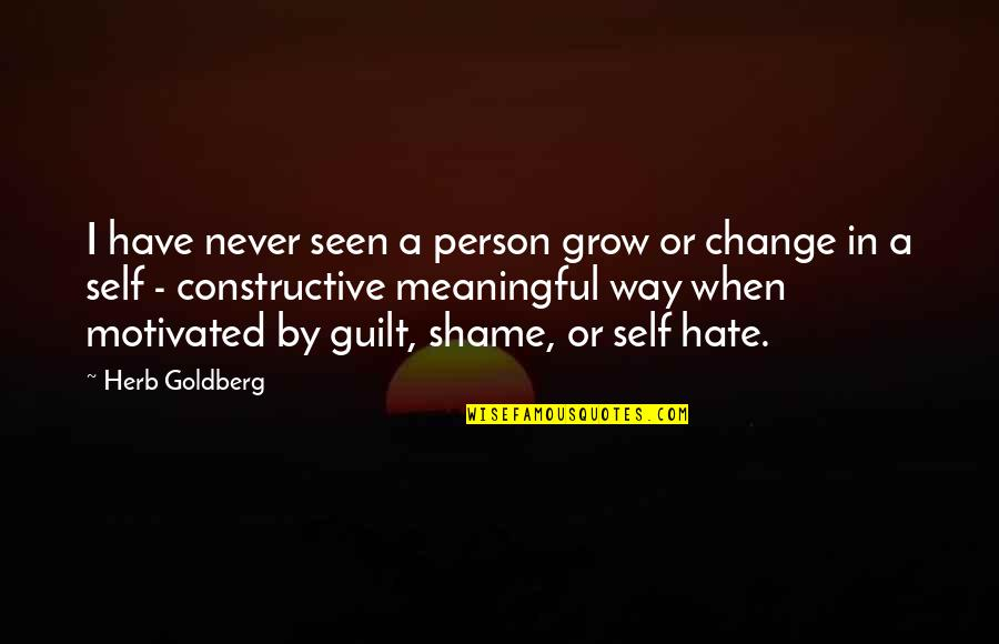 Mathematical Induction Quotes By Herb Goldberg: I have never seen a person grow or
