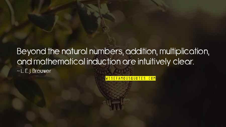 Mathematical Induction Quotes By L. E. J. Brouwer: Beyond the natural numbers, addition, multiplication, and mathematical