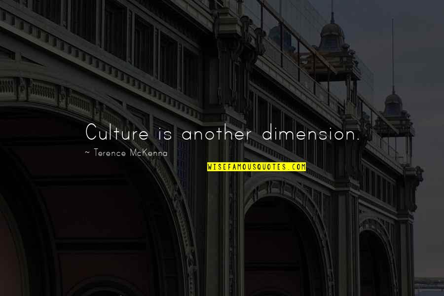 Matinong Lalaki Quotes By Terence McKenna: Culture is another dimension.