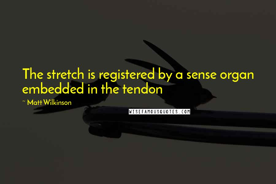Matt Wilkinson quotes: The stretch is registered by a sense organ embedded in the tendon
