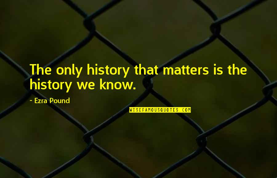 Matter Quotes By Ezra Pound: The only history that matters is the history