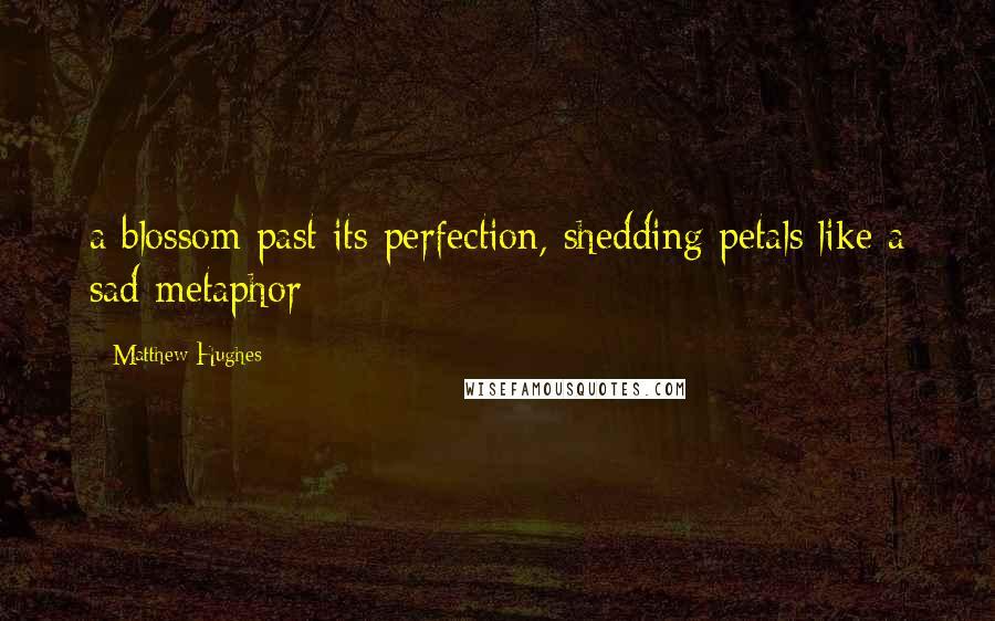 Matthew Hughes quotes: a blossom past its perfection, shedding petals like a sad metaphor