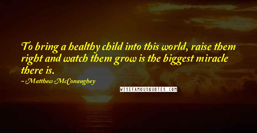 Matthew McConaughey quotes: To bring a healthy child into this world, raise them right and watch them grow is the biggest miracle there is.