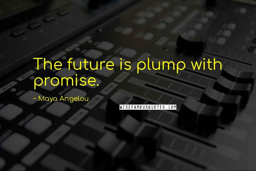 Maya Angelou quotes: The future is plump with promise.