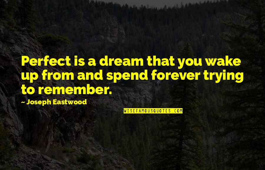 Maybe It Won't Work Out Quotes By Joseph Eastwood: Perfect is a dream that you wake up