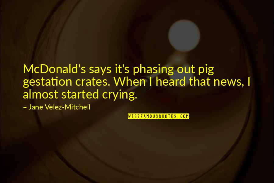 Mcdonald Quotes By Jane Velez-Mitchell: McDonald's says it's phasing out pig gestation crates.