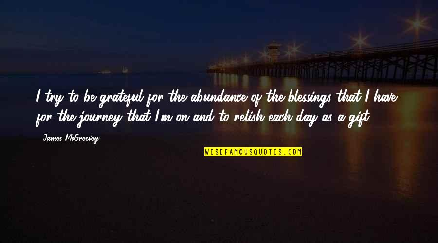 Mcgreevey Quotes By James McGreevey: I try to be grateful for the abundance