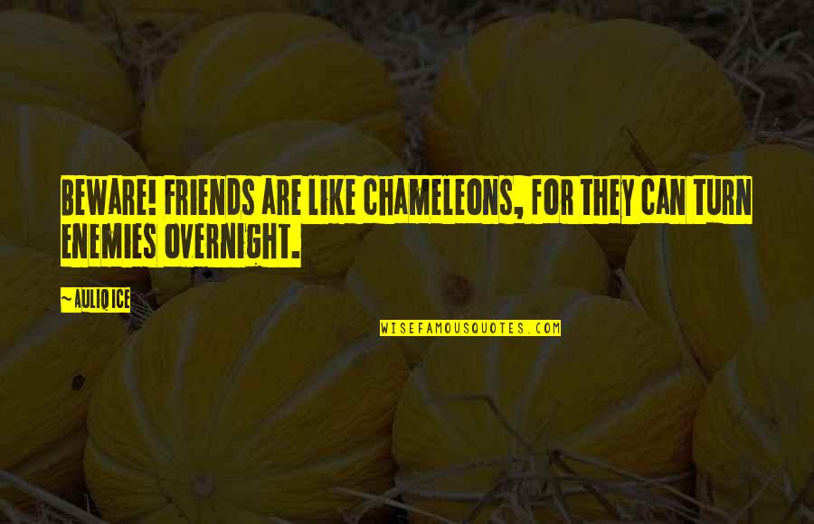 Mcleods Daughters Quotes By Auliq Ice: Beware! Friends are like chameleons, for they can