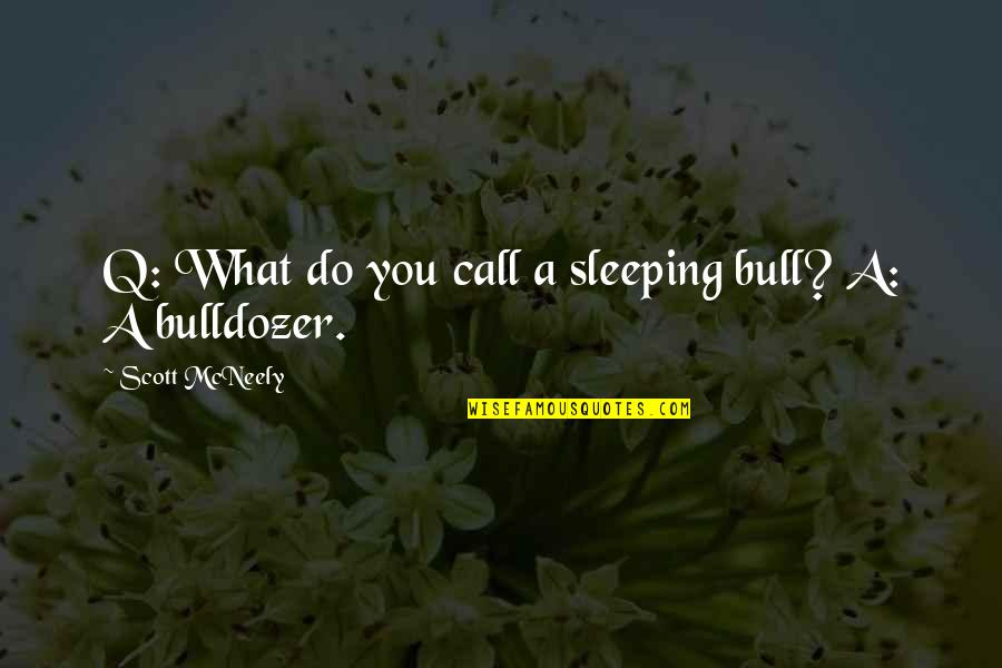 Mcneely Quotes By Scott McNeely: Q: What do you call a sleeping bull?