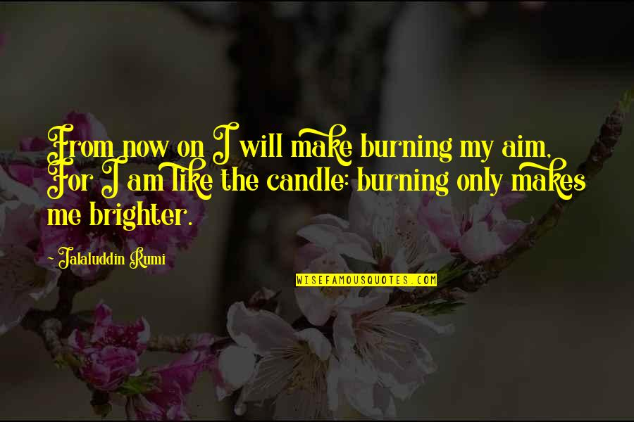 Me Me Me Quotes By Jalaluddin Rumi: From now on I will make burning my