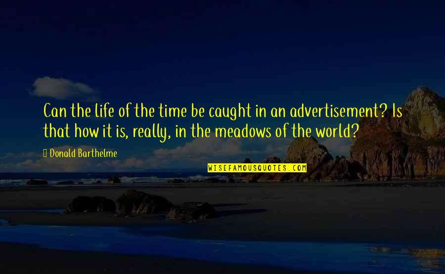 Meadows Quotes By Donald Barthelme: Can the life of the time be caught
