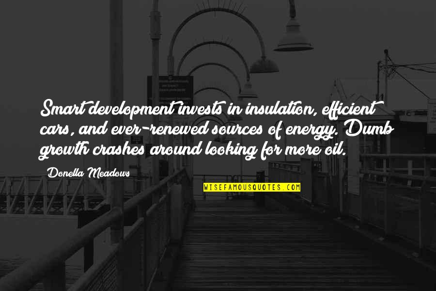 Meadows Quotes By Donella Meadows: Smart development invests in insulation, efficient cars, and