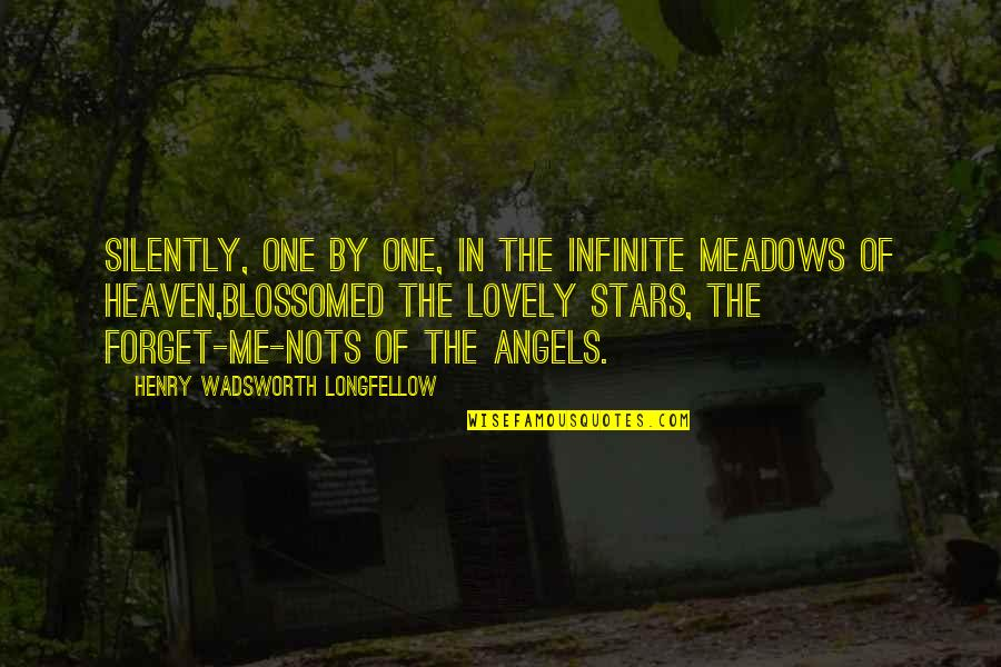 Meadows Quotes By Henry Wadsworth Longfellow: Silently, one by one, in the infinite meadows