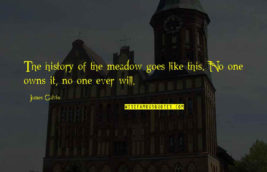 Meadows Quotes By James Galvin: The history of the meadow goes like this.