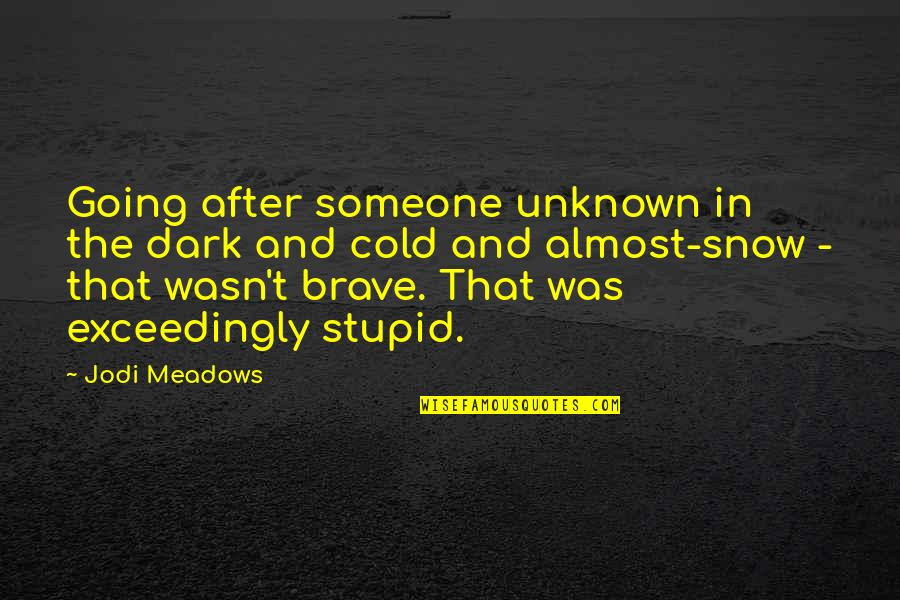 Meadows Quotes By Jodi Meadows: Going after someone unknown in the dark and