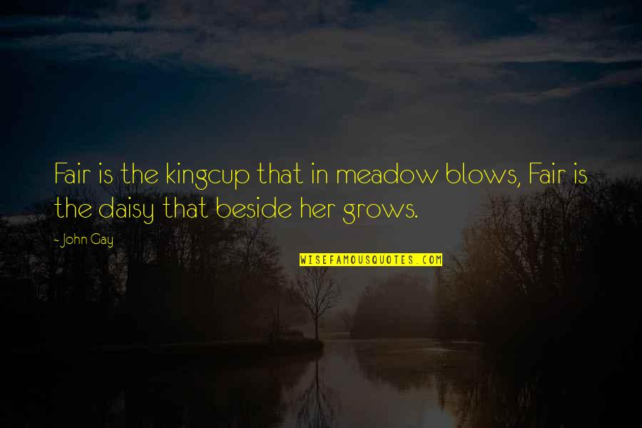Meadows Quotes By John Gay: Fair is the kingcup that in meadow blows,