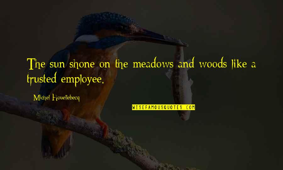 Meadows Quotes By Michel Houellebecq: The sun shone on the meadows and woods