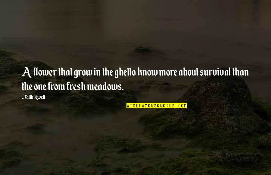Meadows Quotes By Talib Kweli: A flower that grow in the ghetto know