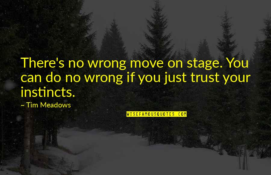 Meadows Quotes By Tim Meadows: There's no wrong move on stage. You can