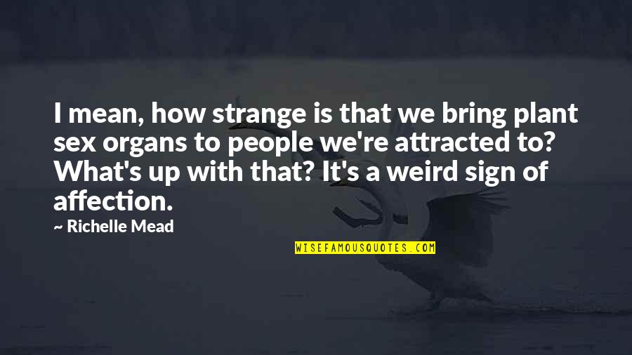 Mead's Quotes By Richelle Mead: I mean, how strange is that we bring