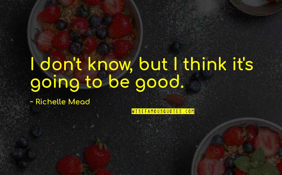Mead's Quotes By Richelle Mead: I don't know, but I think it's going