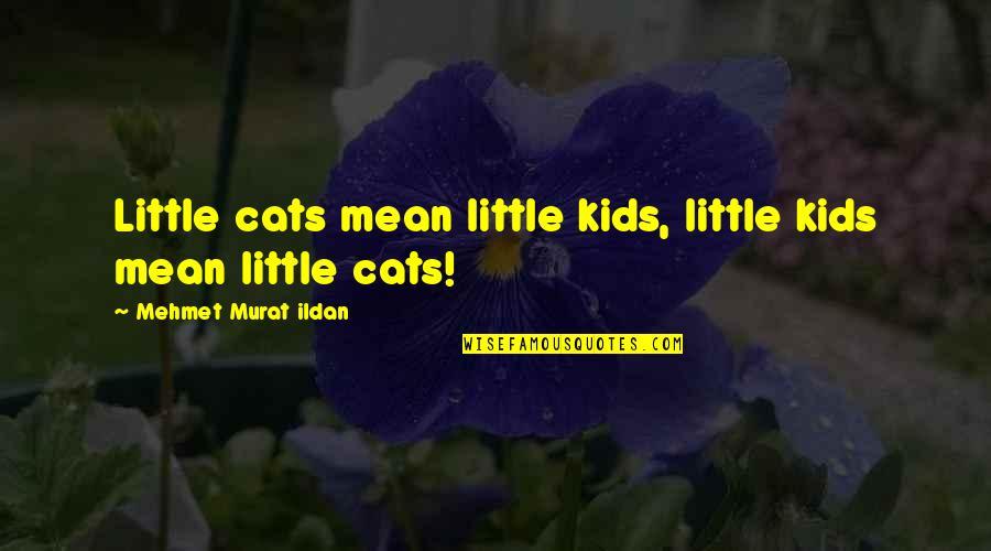 Mean Quotes And Quotes By Mehmet Murat Ildan: Little cats mean little kids, little kids mean