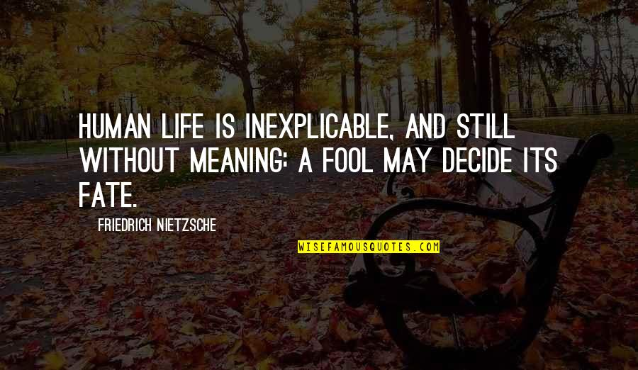 Meaning Of Human Life Quotes By Friedrich Nietzsche: Human life is inexplicable, and still without meaning:
