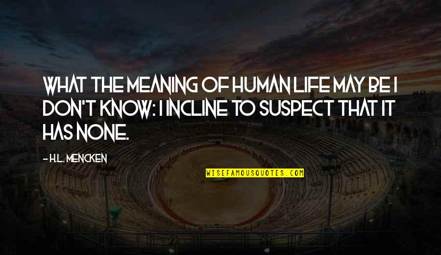 Meaning Of Human Life Quotes By H.L. Mencken: What the meaning of human life may be