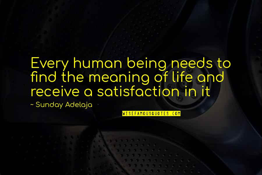 Meaning Of Human Life Quotes By Sunday Adelaja: Every human being needs to find the meaning