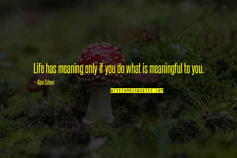 Meaningful Quotes By Alan Cohen: Life has meaning only if you do what
