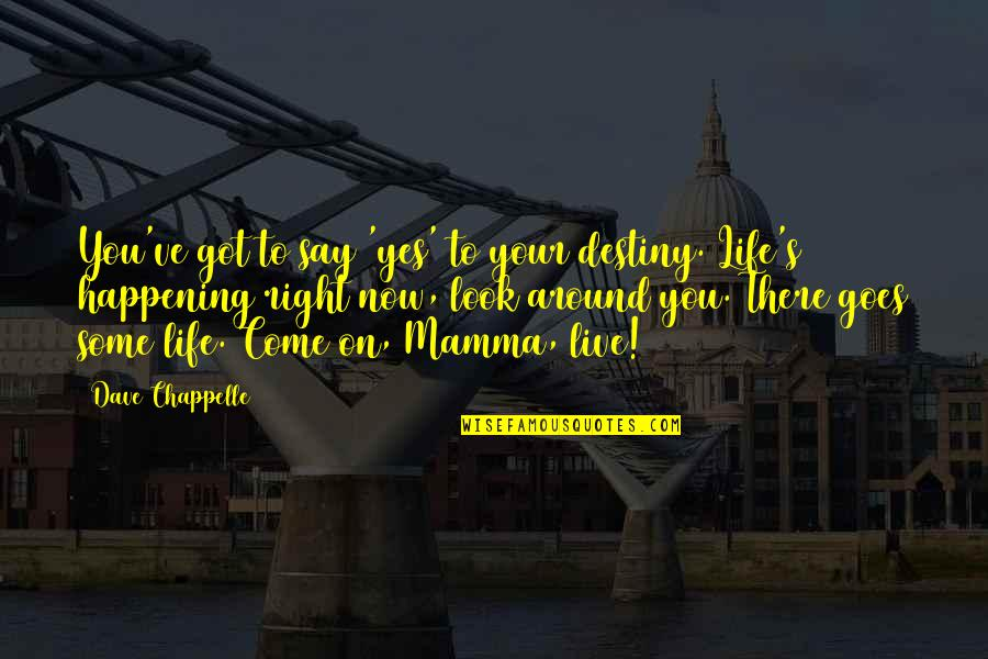 Meaningful Quotes By Dave Chappelle: You've got to say 'yes' to your destiny.