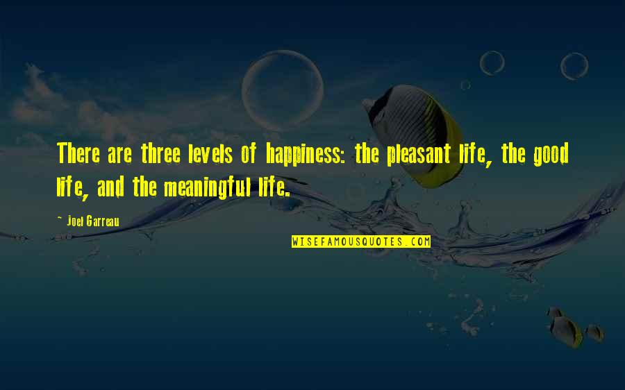 Meaningful Quotes By Joel Garreau: There are three levels of happiness: the pleasant