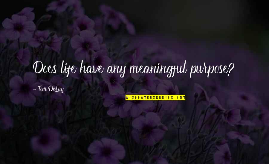 Meaningful Quotes By Tom DeLay: Does life have any meaningful purpose?