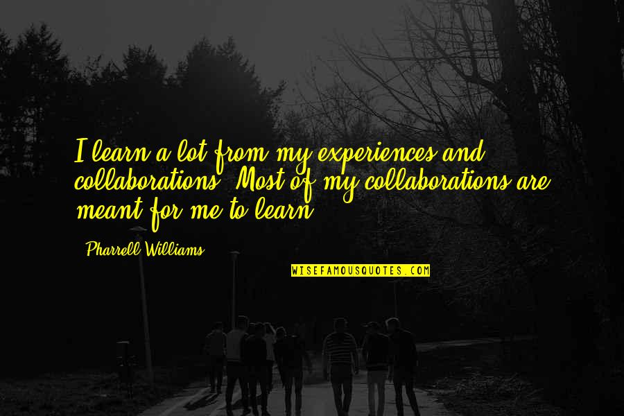 Meant For Each Other Quotes By Pharrell Williams: I learn a lot from my experiences and
