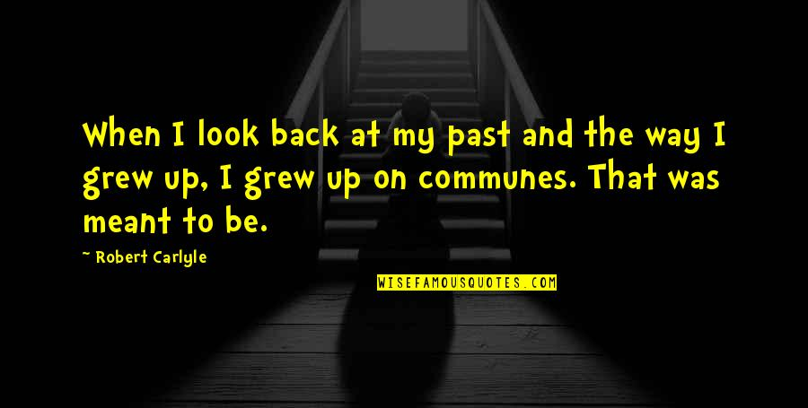 Meant For Each Other Quotes By Robert Carlyle: When I look back at my past and