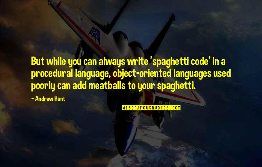 Meatballs 2 Quotes By Andrew Hunt: But while you can always write 'spaghetti code'