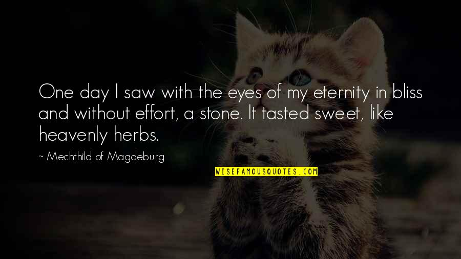 Mechthild Magdeburg Quotes By Mechthild Of Magdeburg: One day I saw with the eyes of