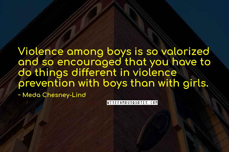 Meda Chesney-Lind quotes: Violence among boys is so valorized and so encouraged that you have to do things different in violence prevention with boys than with girls.